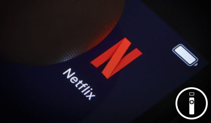 Netflix bug program